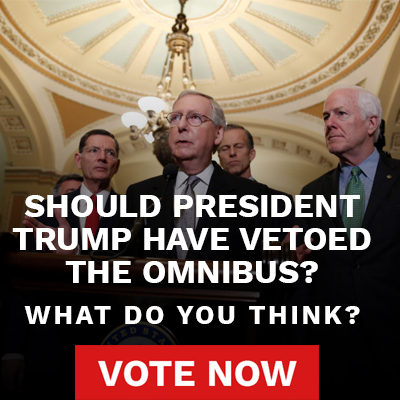 Should President Trump have vetoed the omnibus?