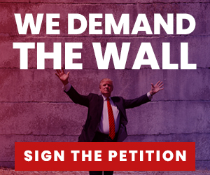 Demand the Wall